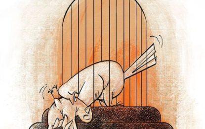 پیام تسلیت جمعی از دوستان و همکاران عبدالفتاح سلطانی به این وکیل زندانی