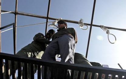 ادامه مخالفتها با طرح اهدای عضو افراد محکوم به اعدام